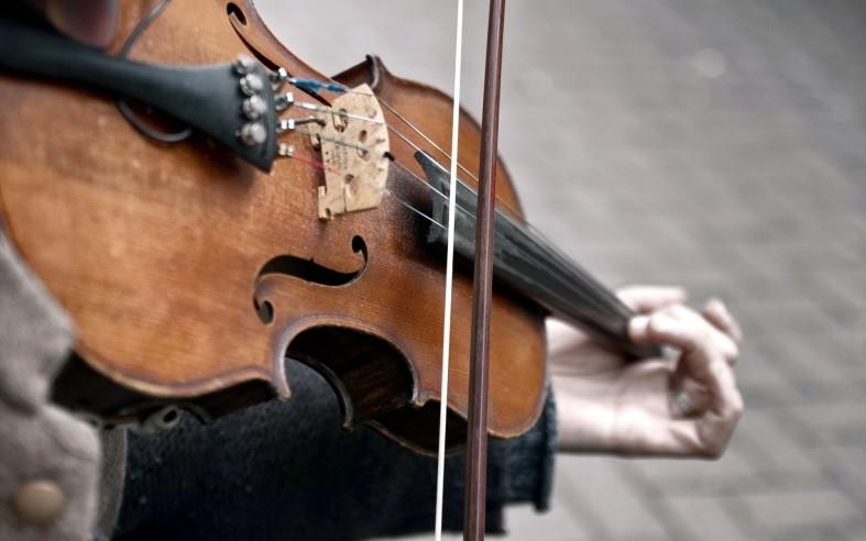 mso-violin
